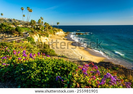 Flowers and view of the Pacific Ocean at Heisler Park, in Laguna Beach, California. - stock photo