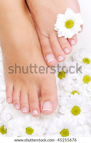 Flowers  around Well-groomed woman feet with the beauty pedicure - stock photo