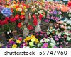 flowers at a flower market in Milan, Italy - stock photo
