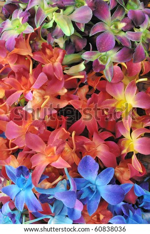 Flowers at the market - stock photo