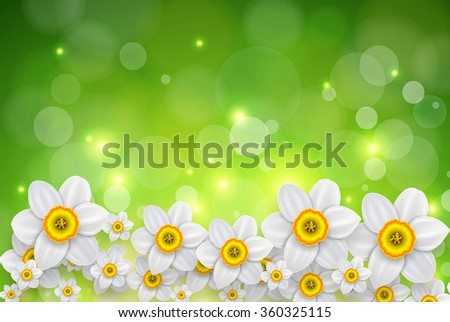 Flowers background, white spring flowers and green bokeh background. - stock photo