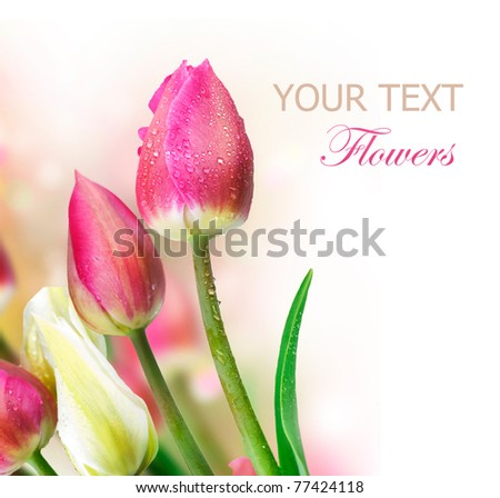 Flowers border.Anniversary Card Design - stock photo