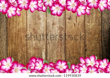 flowers border with old wooden background - stock photo