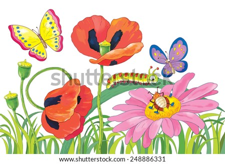 Flowers, butterflies and other insects. Poppies, a daisy and green grass. Summer day. Greeting card. Illustration for children. White background   - stock photo