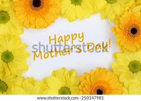 Flowers Chrysanthemums with the text Happy mothers day - stock photo