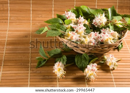 flowers composition on bamboo straws background