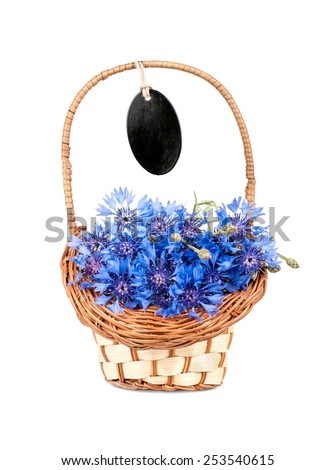 flowers cornflower in the basket closeup isolated - stock photo