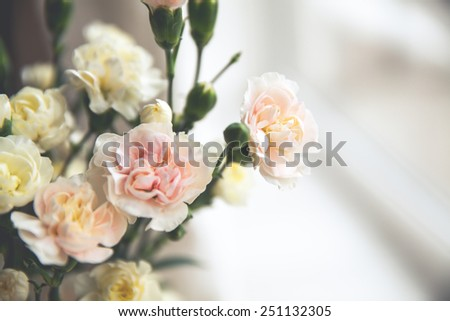 flowers. delicate bouquet of carnations in vintage style - stock photo