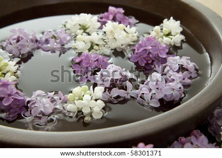 Flowers floating in a bowl of water. Shallow DOF. - stock photo