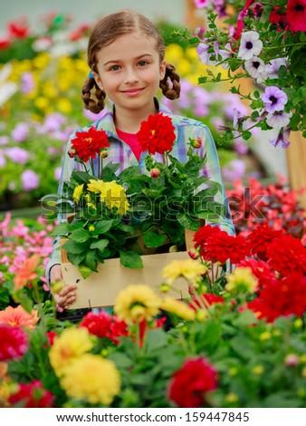 Flowers garden - Lovely girl holding flowers in garden center. - stock photo