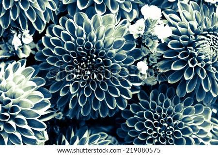 Flowers/grain texsture  - stock photo