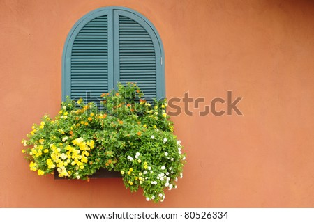 Flowers hanging on the window - stock photo