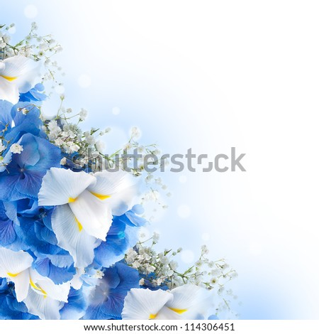 Flowers in a bouquet, blue hydrangeas and white irises - stock photo