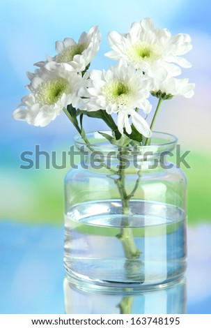 Flowers in bank on natural background - stock photo