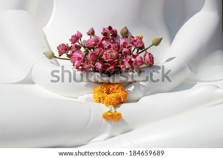 Flowers in Buddha hands - stock photo
