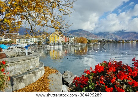 Flowers in embankment of town of Vevey and Lake Geneva, canton of Vaud, Switzerland  - stock photo