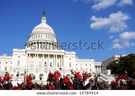 Flowers in front of the U.S. Capitol, where the Senate and House of Representatives meet - stock photo