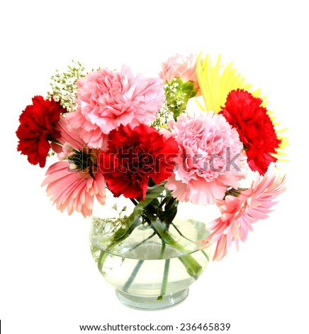 Flowers in Mother's day - stock photo