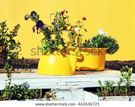 Flowers in old yellow  teapot and casserole on white table.Still life in yellow colors.