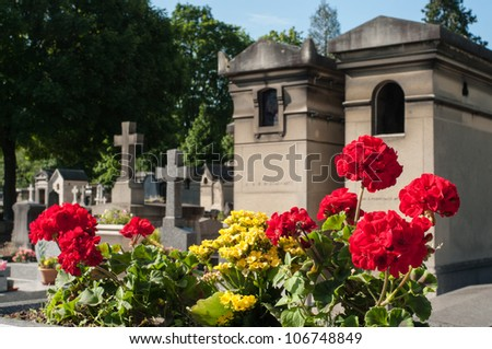 Flowers in the cemetery - stock photo