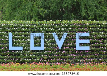 """Flowers in the garden with a """"Love"""" word - stock photo"""