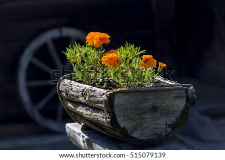 Flowers in the old wooden flower pot