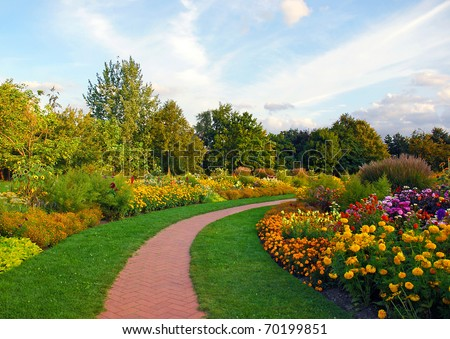 flowers in the park - stock photo