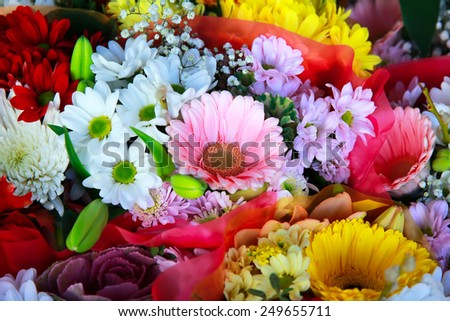 Flowers in the shop   - stock photo