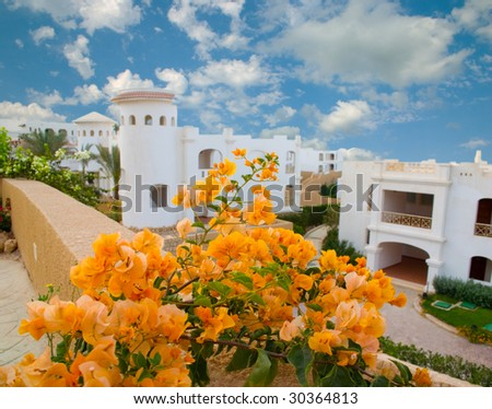 Flowers in tropical hotel - stock photo
