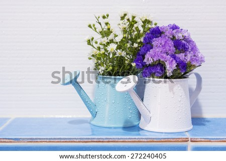 Flowers in watering can decorated in the bathroom