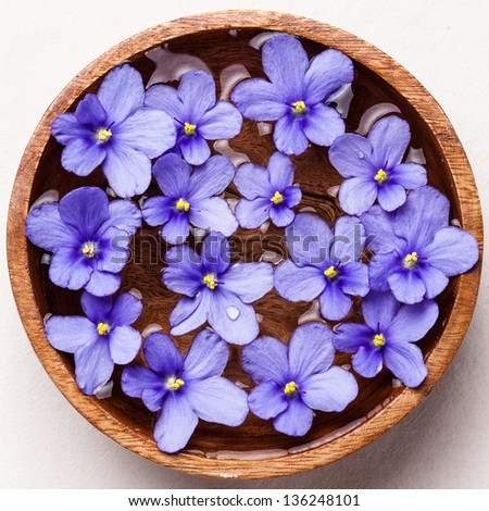 Flowers in wooden bowl with water for SPA - stock photo