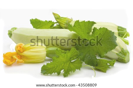 Flowers, leaves and vegetable marrow fruits isolated on a white background