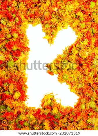 Flowers letter K. - stock photo