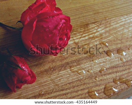 Flowers. Macro. Photo. Background. Rose. Pink flower. Bud. Rosebud. Wooden background. Red flower. Drops. Water. Water droplets. - stock photo