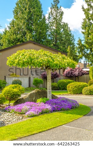 Flowers, nicely trimmed bushes and stones in front of the house, front yard.