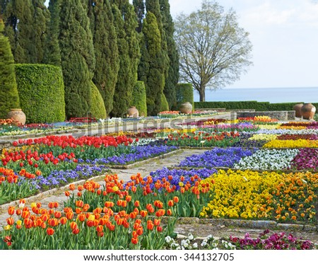 Flowers of red tulips on the lawn nature background - stock photo
