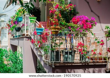 Flowers on balcony. Photo taken in Alanya, most popular Turkish resort - stock photo
