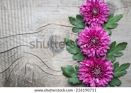 Flowers on old wooden background   - stock photo