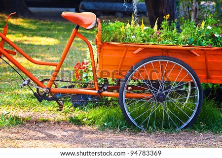 Flowers on The back of a Tricycle