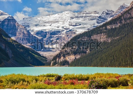 Flowers on the bank of glacial Lake Louise. The emerald water of the lake surrounded by mountains, glaciers and pine forests. Banff National Park, Rocky Mountains, Canada - stock photo