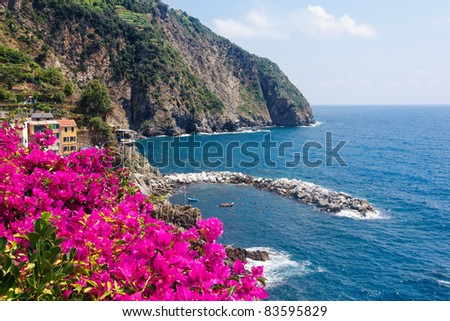 Flowers on the Cinque Terre coast in Italy - stock photo