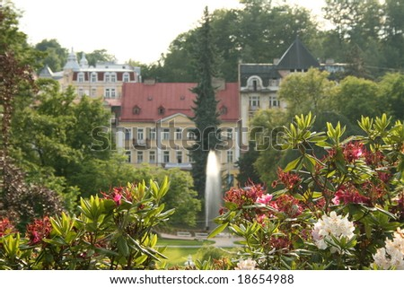Flowers on the city garden in Marianske Lazne- famous spa place since XVIII century. - stock photo