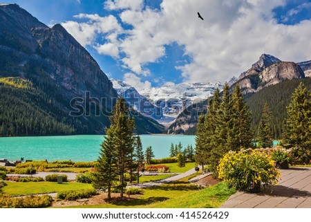 Flowers on the mountain glacial lake Louise. Beautiful sunny day in Banff National Park, Rocky Mountains, Canada - stock photo