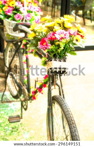 flowers on the Old bicycle - stock photo