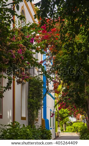 flowers on the streets of Puerto Mogan Gran Canaria