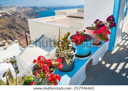 Flowers on the terrace. White architecture on Santorini island, Greece. Beautiful summer landscape. Soft focus