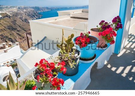 Flowers on the terrace. White architecture on Santorini island, Greece. Beautiful summer landscape. Soft focus - stock photo