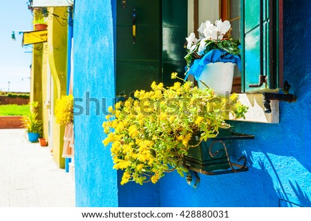 Flowers on the window. Colorful houses in Burano island near Venice, Italy - stock photo