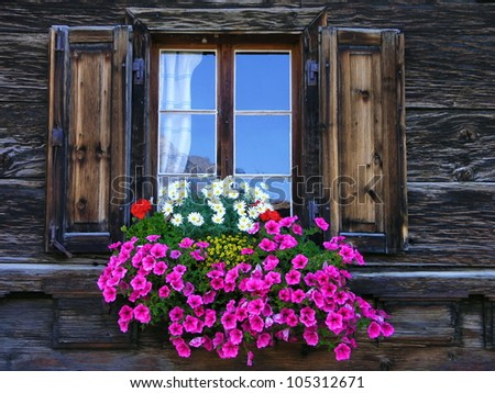 Flowers on the window of a wooden house