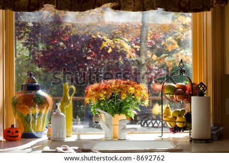 Flowers on the windowsill - stock photo